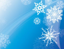 Winter sky. Various snowflakes in a winter sky Stock Image