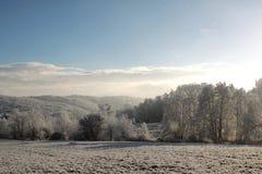 Winter, Sky, Snow, Tree royalty free stock image