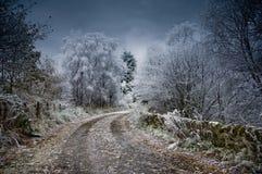 Winter, Sky, Tree, Snow stock photography