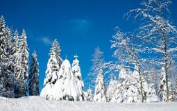 Winter, Sky, Tree, Snow royalty free stock photo
