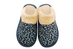 Winter slippers Stock Image