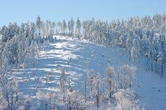 Winter slope Stock Photo