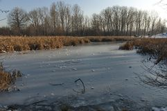 Winter small lake in the beautiful South park Royalty Free Stock Photos