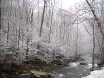Winter in the Smokies. As Fall moves out, the soft blanket of winter begins to cover the ground Stock Photography