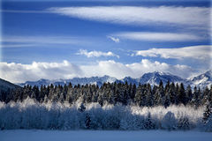 Winter snow Royalty Free Stock Photography