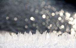 Winter Snow. The Asian Winter covered the ground. Snow gleams white Stock Images