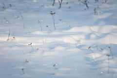 Winter snow background Stock Photo