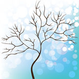 Winter snow background, tree without leaves Royalty Free Stock Photo