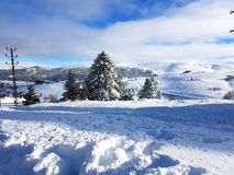 Winter and Snow Royalty Free Stock Photography