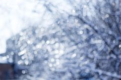 Winter snow blurred background in city park, snowfall in forest, tree branches and bushes covered with snow. Abstract snowflakes in blur royalty free stock image