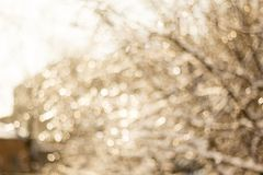 Winter snow blurred background in city park, snowfall in forest, tree branches and bushes covered with snow. Abstract snowflakes in blur stock photography