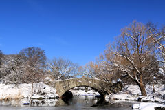 Winter Snow in Central Park Stock Images