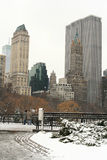 Winter Snow in Central Park Stock Photos
