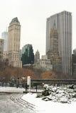 Winter Snow in Central Park Stock Photos