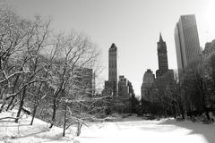 Winter Snow in Central Park, Manhattan Stock Image