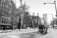 Winter Snow in Central Park, Manhattan Royalty Free Stock Image
