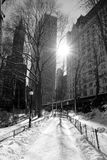 Winter Snow in Central Park, Manhattan Royalty Free Stock Photography