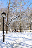 Winter Snow in Central Park, Manhattan Royalty Free Stock Images