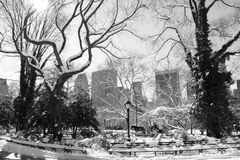 Winter Snow in Central Park, Manhattan Stock Photo