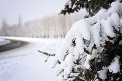 Winter snow christmas background Royalty Free Stock Photo