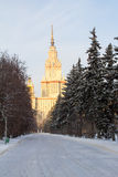 Winter snow-covered alley leads to the building of the University. Moscow. Russia. Stock Photos