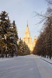 Winter snow-covered alley leads to the building of the University. Moscow. Russia. Stock Photography