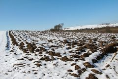 Winter. Snow covered fields frosty winter morning.  royalty free stock photography