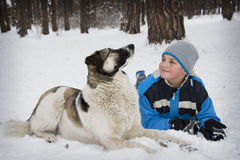 In winter, the snow-covered forest is a boy with a dog. Royalty Free Stock Photo