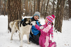 In winter, the snow-covered forest children play with the dog. Stock Image