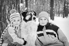 In winter, the snow-covered forest children play with the dog. Royalty Free Stock Photo