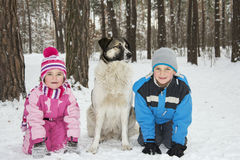 In winter, the snow-covered forest children play with the dog. Royalty Free Stock Photography