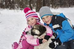 In winter, the snow-covered forest children play with the dog. Stock Images