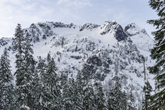Winter Snow Covered Mountain Ridge with Summit Peak Framed by Forest Trees Royalty Free Stock Photography