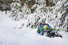 In winter, snow-covered pine forest boy lies near the snowdrift. Royalty Free Stock Photography