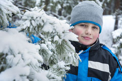In winter, snow-covered pine forest a boy standing in the snow. Stock Image