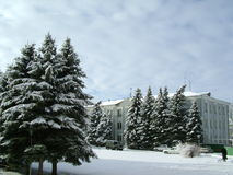 Winter. Snow-covered spruce trees frost road machine building blue sky is cloudy Stock Photography