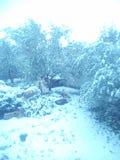 Winter. Snow in Croatia Stock Photo