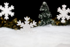 Winter snow crystal in a model forest Stock Images