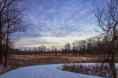 Winter snow at dusk fills the sky with beautiful tones of violet over a wooded field. Winter scene stock images