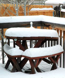 Winter snow. Royalty Free Stock Photo