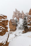 Winter Snow Falling on Bryce Canyon National Park Hoodoos Royalty Free Stock Photo
