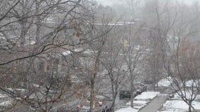 Winter snow stock footage
