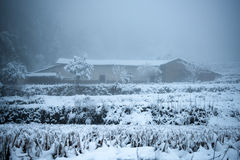 Winter Snow Falling on Log Cabin in Forest Royalty Free Stock Image