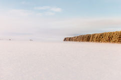 Winter snow field and fog Royalty Free Stock Photography