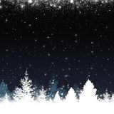 Winter Snow Forest Stock Images
