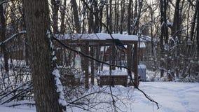 Winter snow in Gorky park stock photo