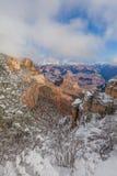 Winter Snow at Grand Canyon South Rim Stock Photos
