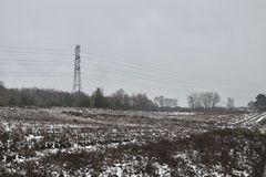 Winter snow on heather moorland, bare trees in distance and pylons / electricity wires royalty free stock image