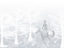 Winter Snow Horse Rider. A girl riding an appaloosa horse through the woods in a snowstorm Royalty Free Stock Image