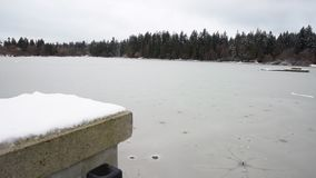 Lost Lagoon Snow, Stanley Park 4K. UHD stock video footage